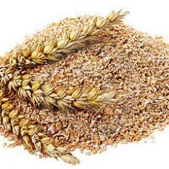 Son de blé pour vos insectes